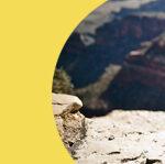 Urgent AZ Budget update from Children's Action Alliance