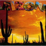 REMEMBER Campaign for Change – Write a Postcard for A Brighter Arizona! – Deadline May 8th