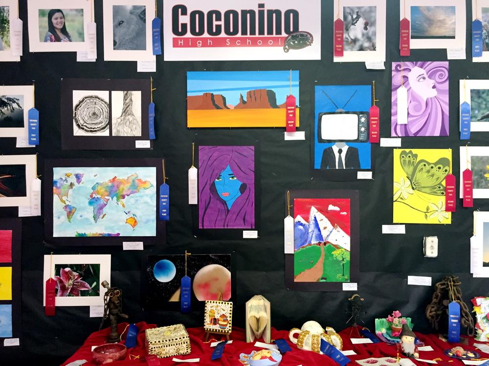 09-05-15 County Fair education-06