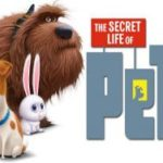 Movies on the Square: Secret Life of Pets