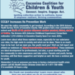 Connections Spotlight: CCC&Y Increases Its Prevention Work