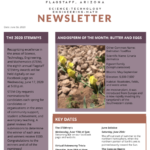 Flagstaff STEM City June Newsletter