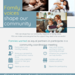 Families wanted as equal partners to participate in a community coordination meeting