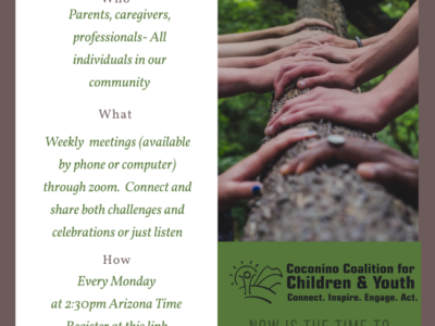 Connections Spotlight — Interdependence